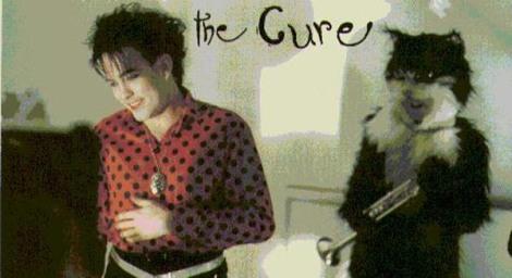 cure-lovecats.jpg